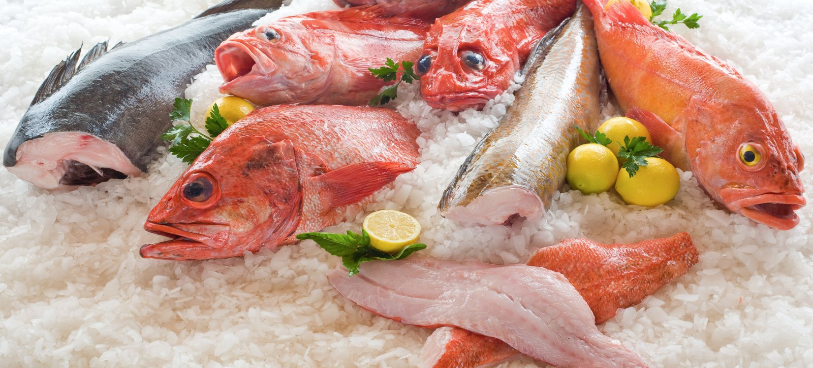 2_pacific_seafood.jpg